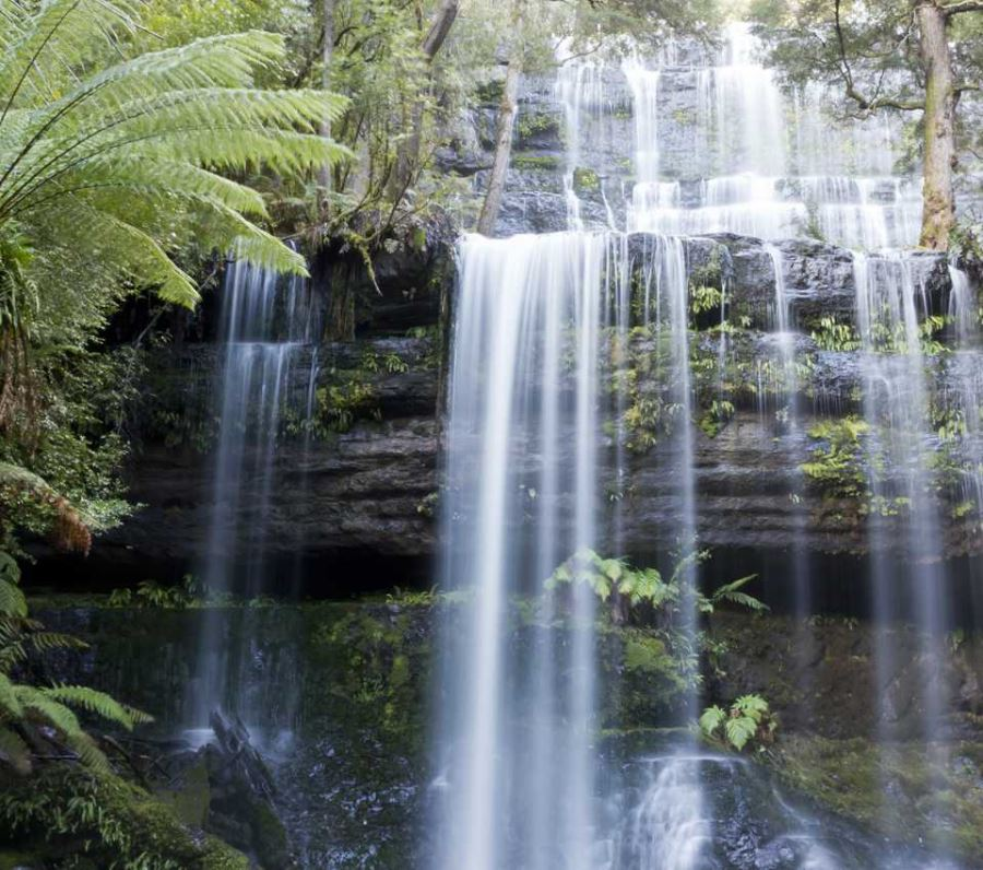 Waterfall in Tasmanian Wilderness